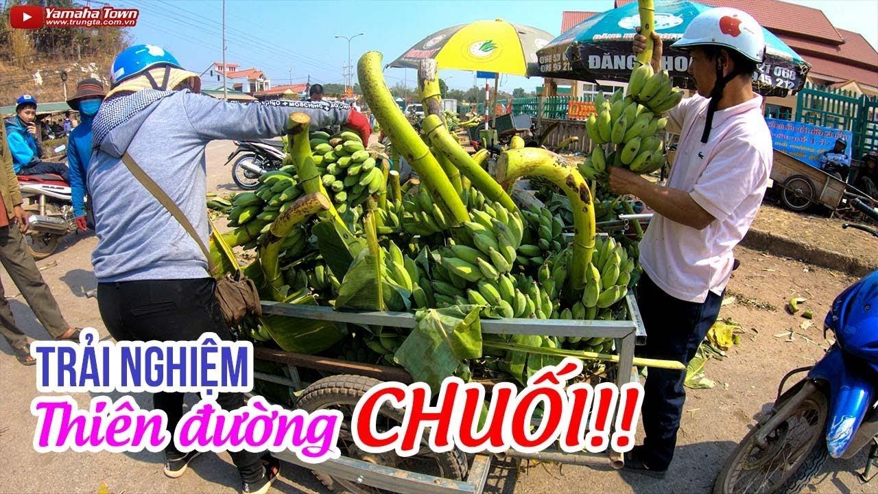 dao-cho-xuan-va-trai-nghiem-thien-duong-chuoi-cua-dong-bao-van-kieu
