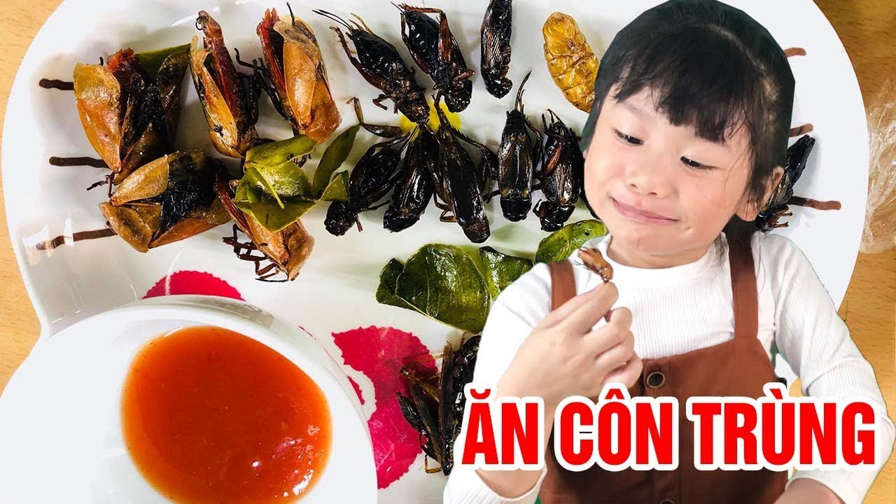 Thử thách ăn hết đĩa côn trùng với em bé 5 tuổi 😂